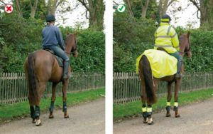vulnerable road users Horses