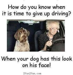 Old age driving